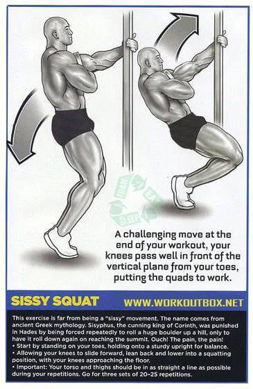 Sissy Squat - Leg Butt Workouts Healthy Fitness Body Plan Calves