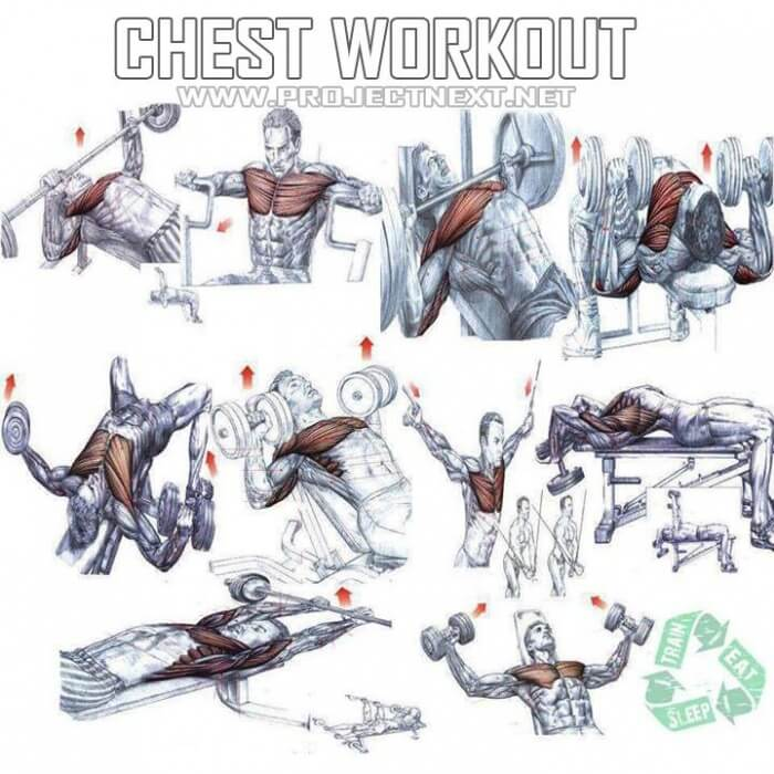 Chest Workout Plan Healthy Fitness Core Arm Training Routine