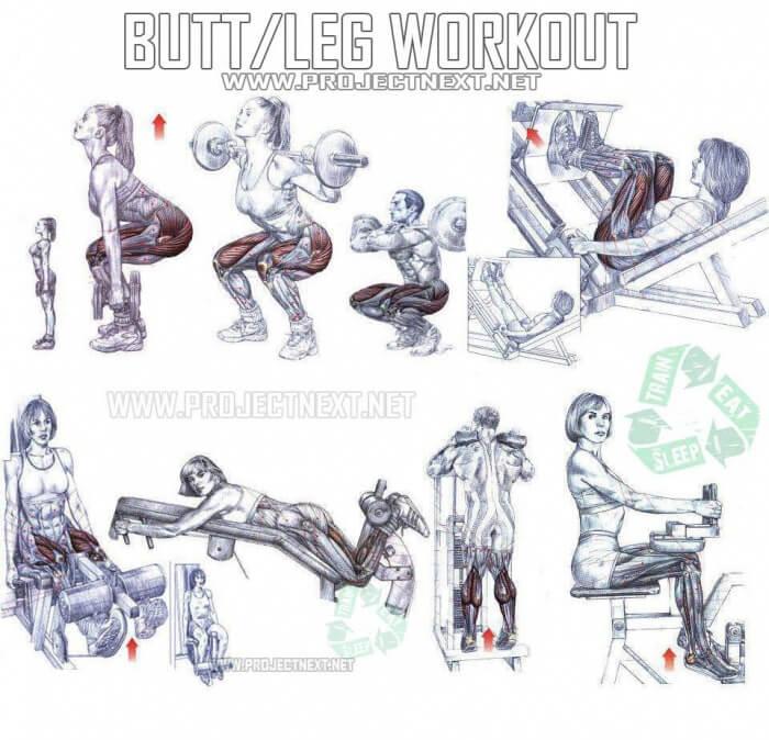 Leg Workout Plan Healthy Fitness Exercies Training Routin