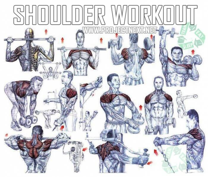 Shoulders Workout Plan Healthy Fitness Training Routine Back