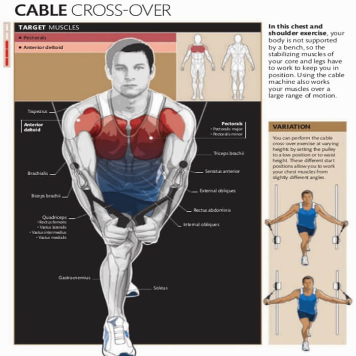 Cable Cross Over Healthy Fitness Chest Workout Plan Routine Abs
