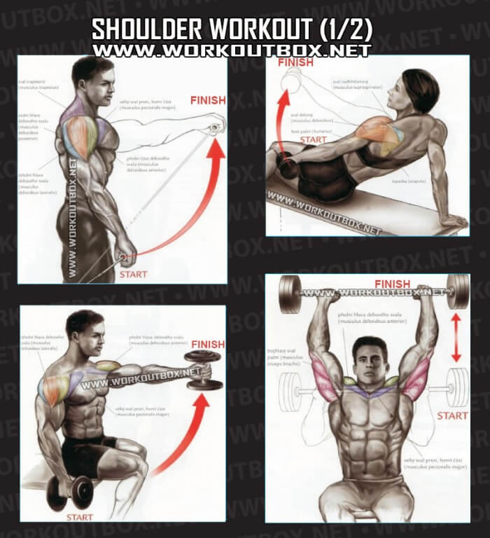 Shoulder Workout Part 1 - Healthy Fitness Training Routine ...