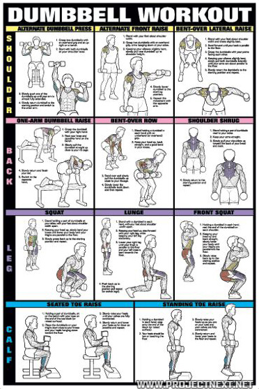 gym exercise chart hd: Dumbbell workout chart hd dumbbell workout chart 1 healthy