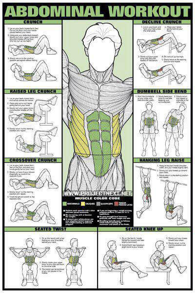 workout chart: Abdominal workout chart healthy fitness training sixpack abs