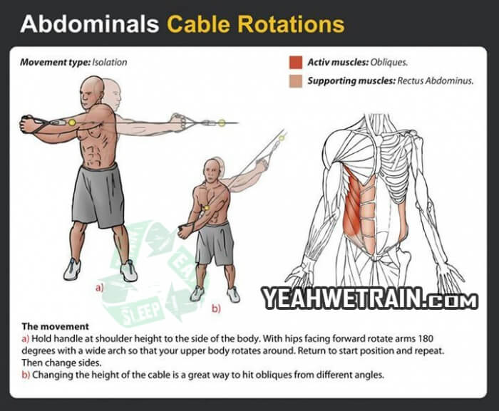 Sixpack Workout Cable Rotations Healthy Fitness Tips Tricks