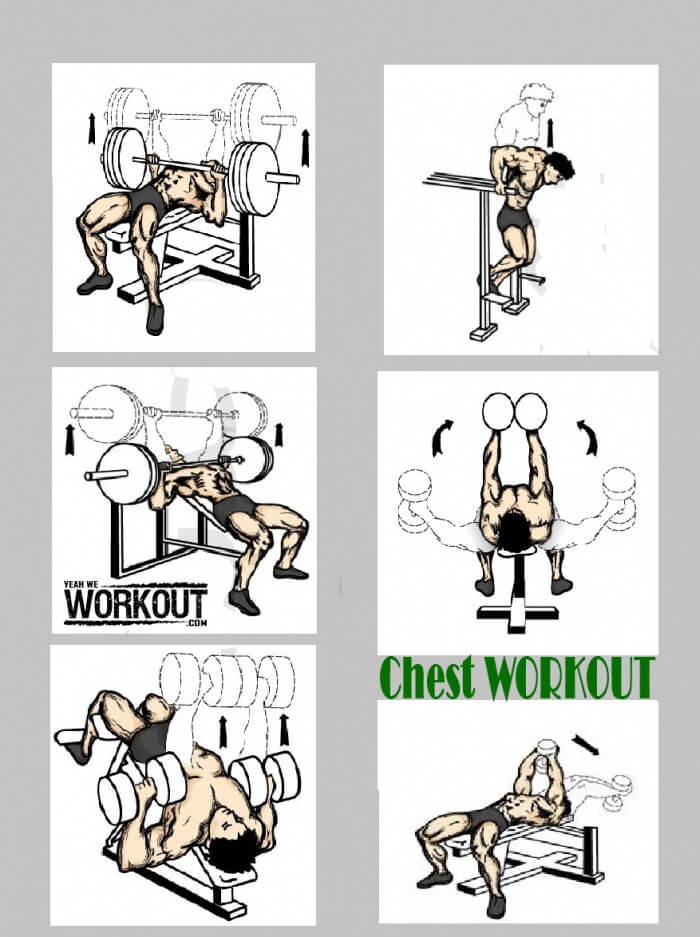 Top 6 Chest Exercises - Health Fitness Workout How To