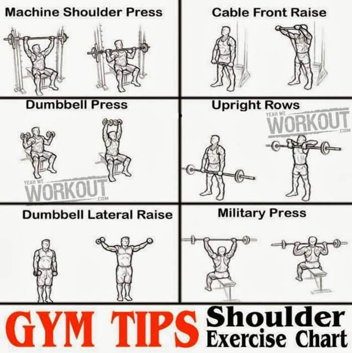 Shoulder Exercise Chart