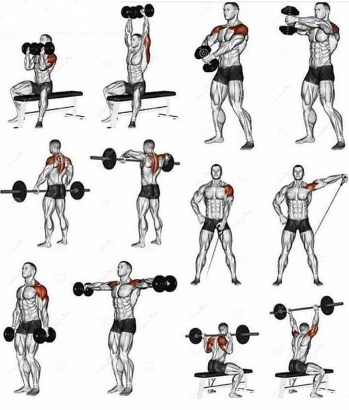 Shoulder Workouts !! Healthy Fitness Training Plan For Stronger