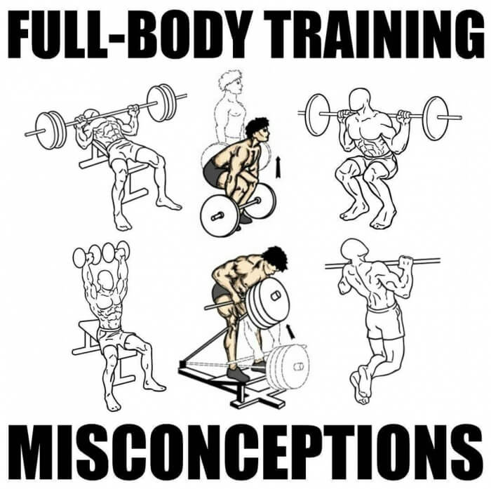 Full-Body Training Misconceptions! Must Read This Amazing Tips
