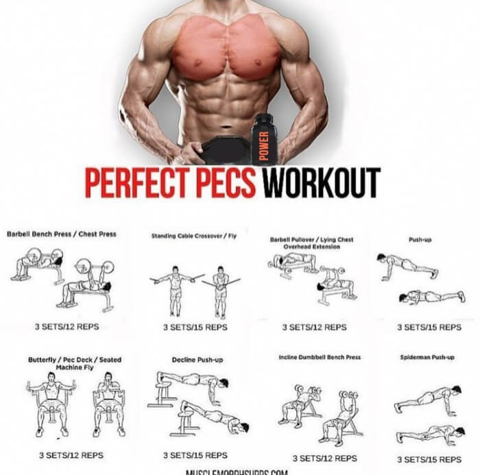 Perfect Pecs Workout! Best Chest Training Plan