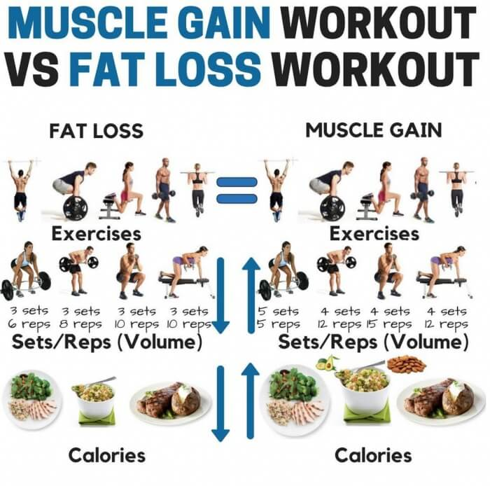 Muscle Gain Workout VS Fat Loss Workout! Healthy Fitness Tips